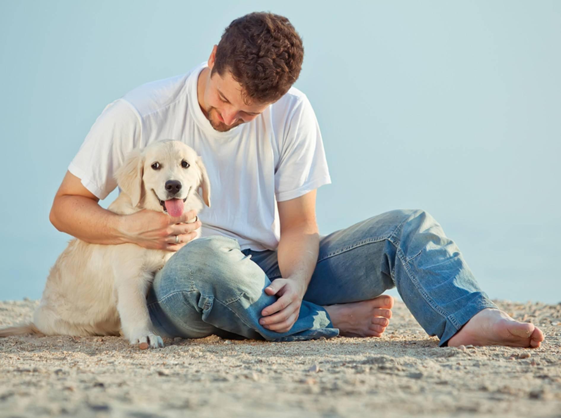 Vertrauen ist wichtig in der Mensch-Hund-Freundschaft – Shutterstock / Nina Buday