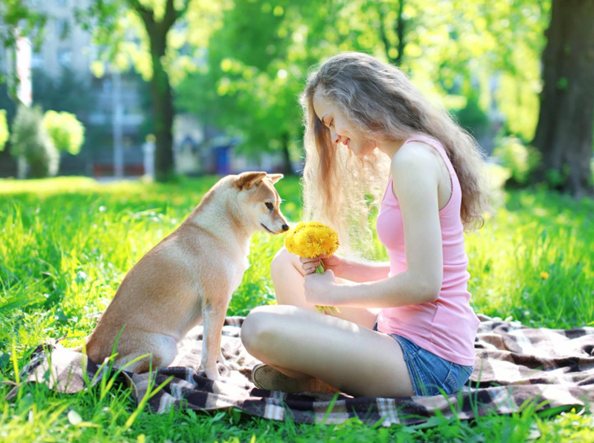 Das Verhalten der Hundehalter wirkt sich auf die Persönlichkeit des Hundes aus – Shutterstock / Rohappy