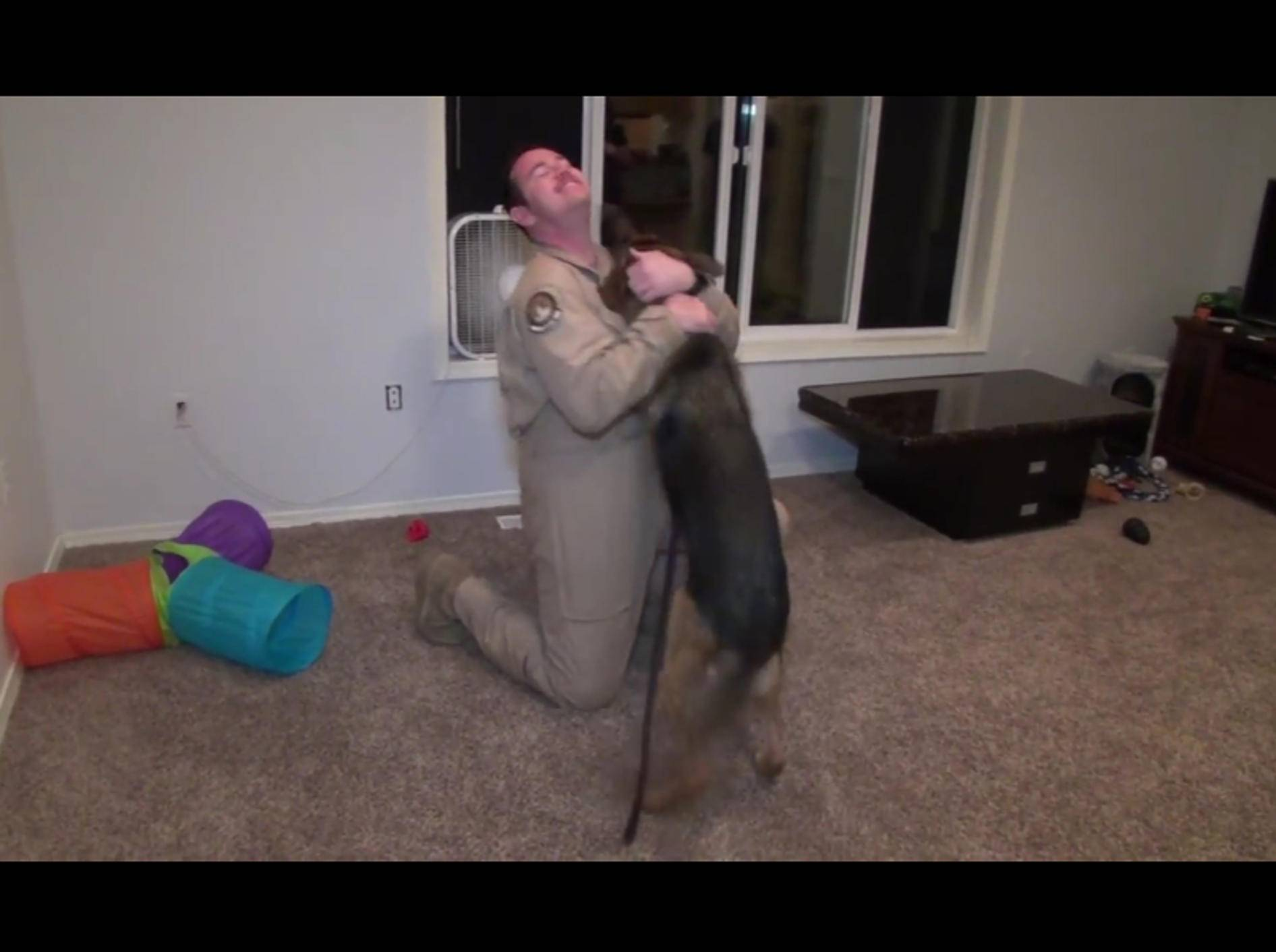 Wie stark die Liebe zwischen Mensch und Hund sein kann, zeigt die Freude über dieses Wiedersehen – YouTube / ProtoAnimation