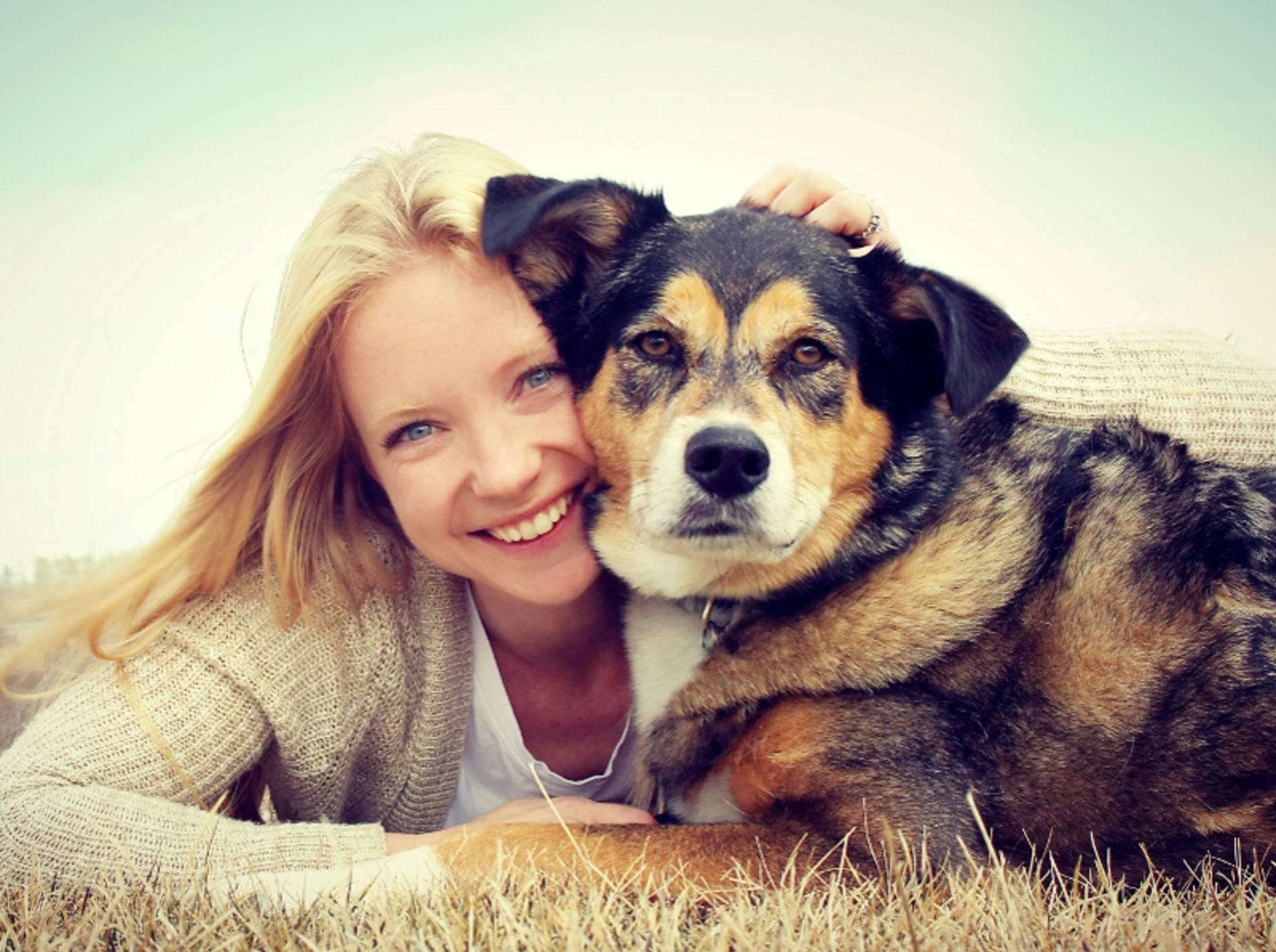 Der grobe Aufbau des Gehirns unterscheidet sich bei Hund und Mensch nicht groß, die Kapazitäten und Möglichkeiten schon – Shutterstock / Christin Lola