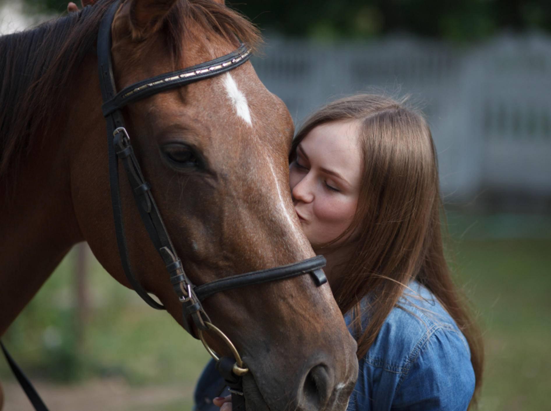 """Pferde sind äußerst soziale und empathische Tiere, die Menschen oft sehr gut """"lesen"""" können – Shutterstock / Vasyl Syniuk"""