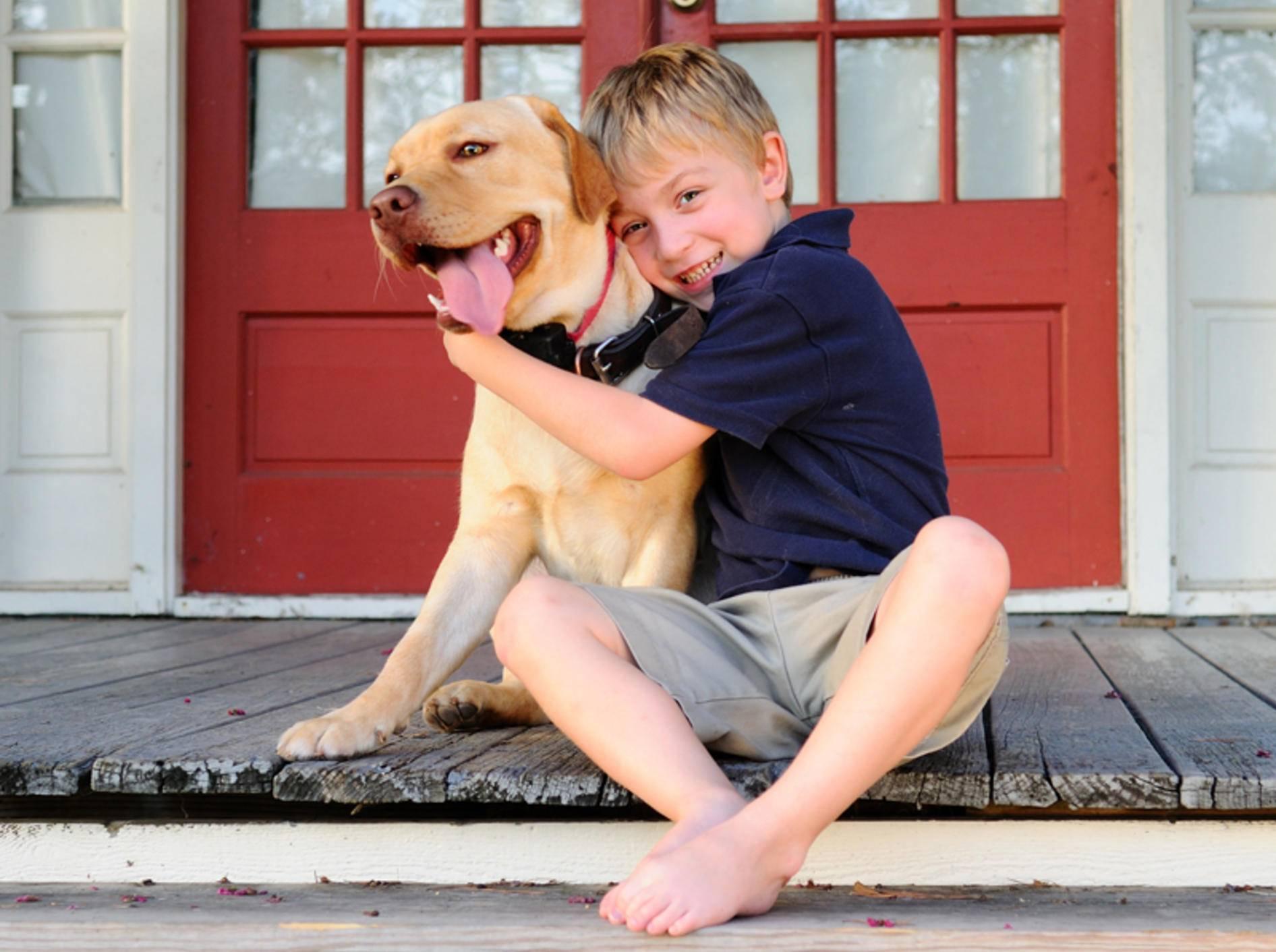 Häufiges Missverständnis: Hunde mögen eigentlich nicht gern so eng umarmt werden – Shutterstock / Brberrys