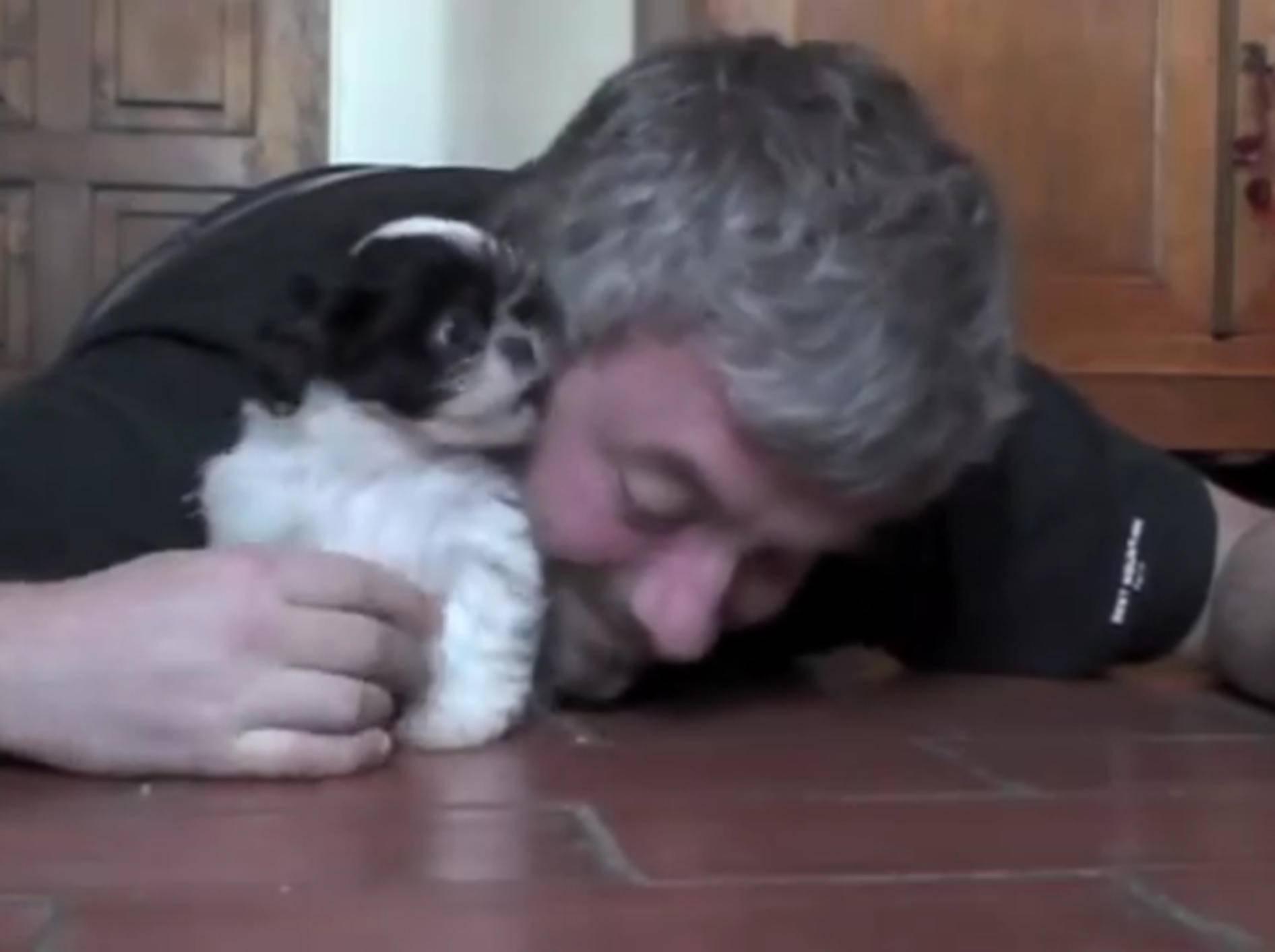So süß wie die beiden Freunde hier gemeinsam auf dem Boden kuscheln und spielen – YouTube / Philippe LISSART