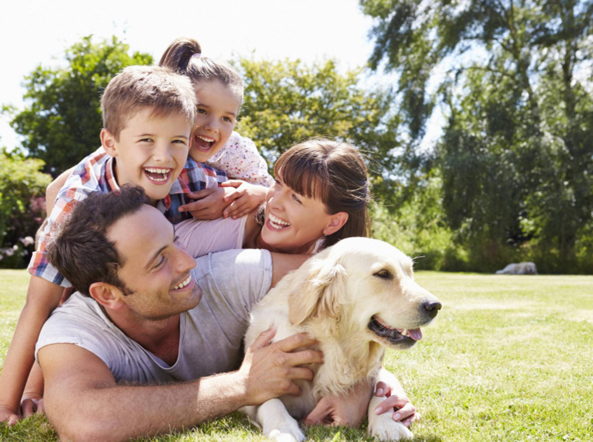 Ein Hund bereichert alle im Haushalt und spannt die gesamte Familie mit ein – Shutterstock / Monkey Business