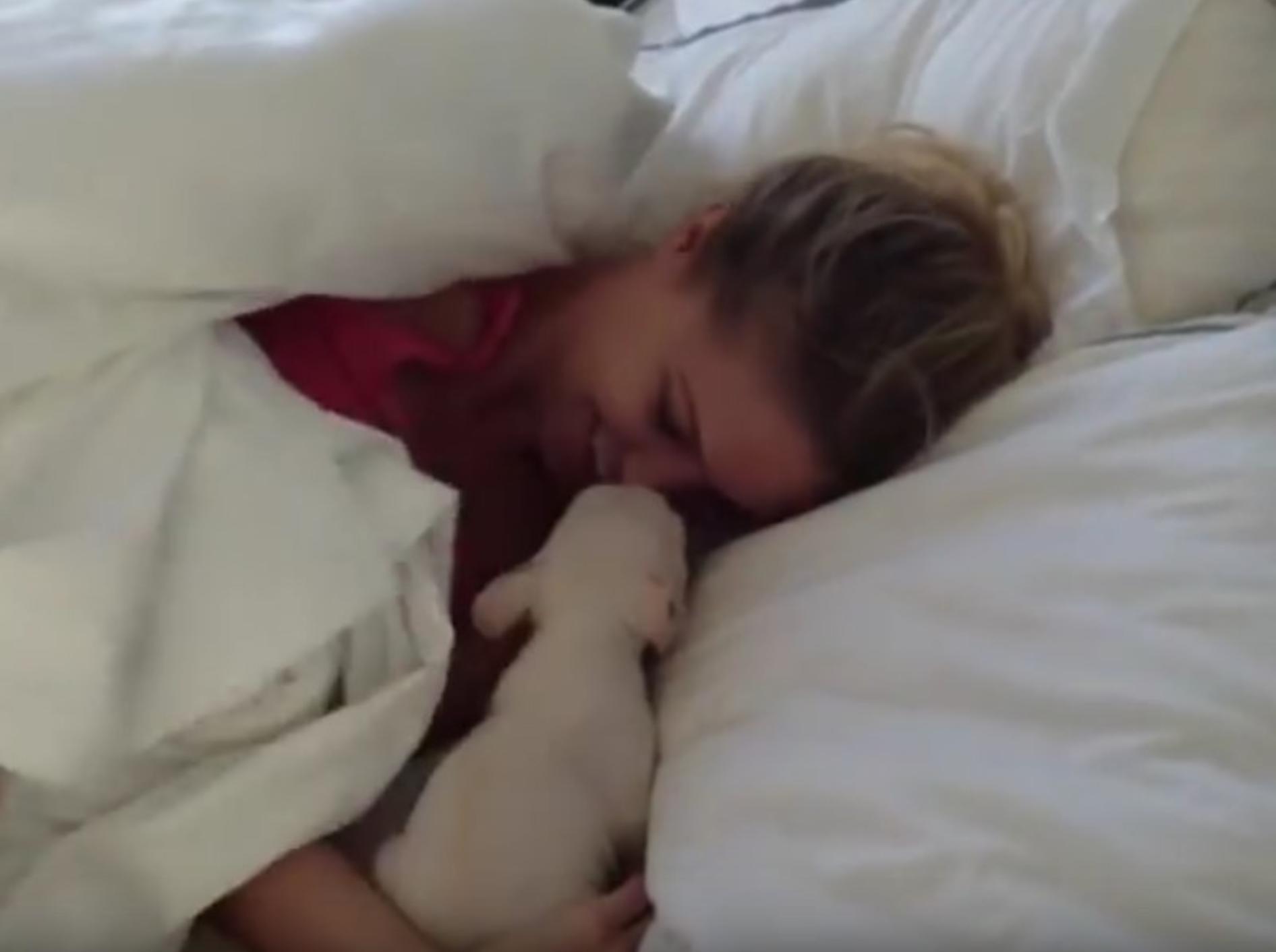 Was stubst mich denn da plötzlich aus den Schlaf? Mein neuer bester Freund! – YouTube / The Covino & Rich Show