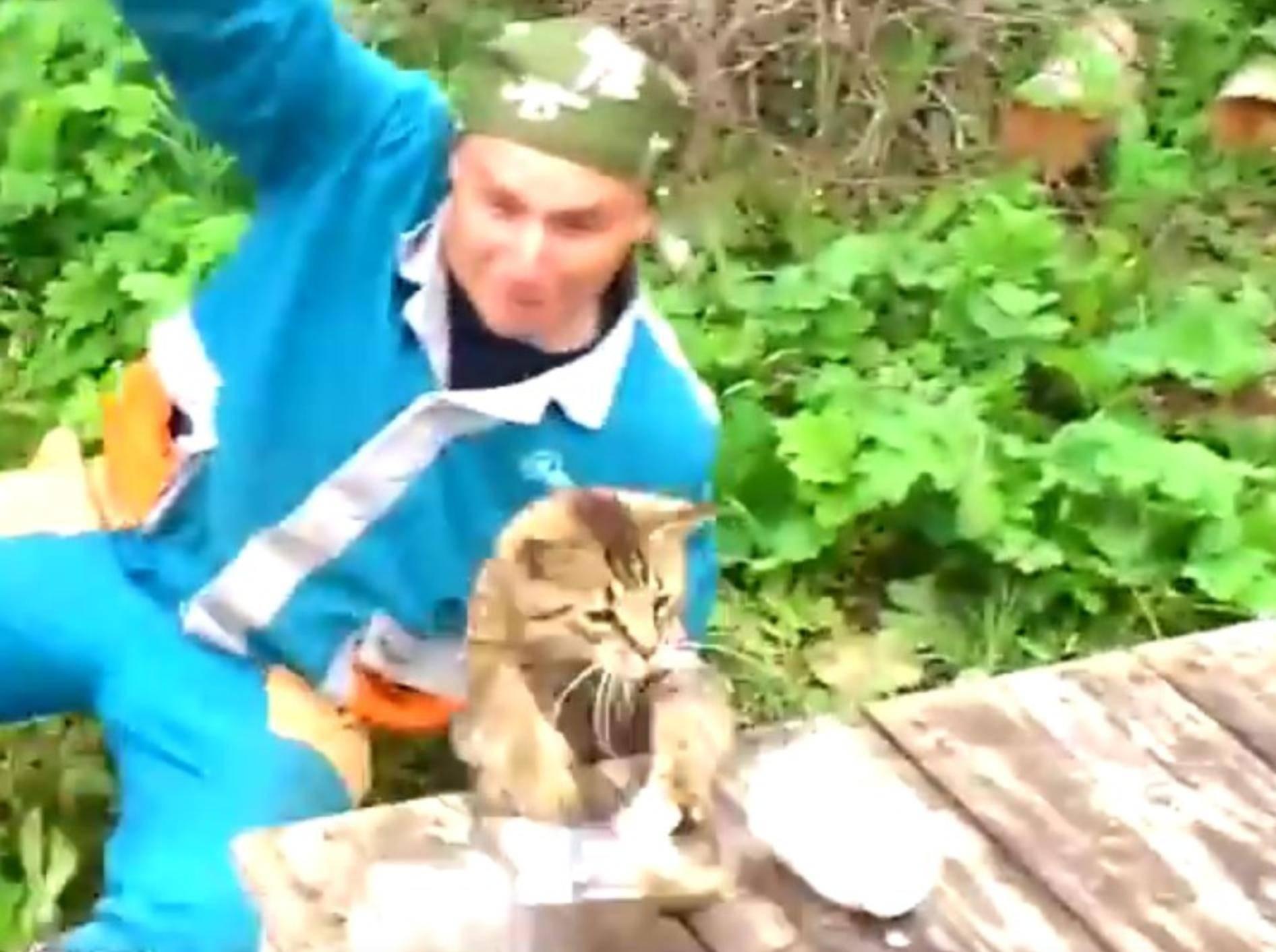 Gerade gefangen, schon wieder verloren. Armer Angler! – YouTube / ignoramusky