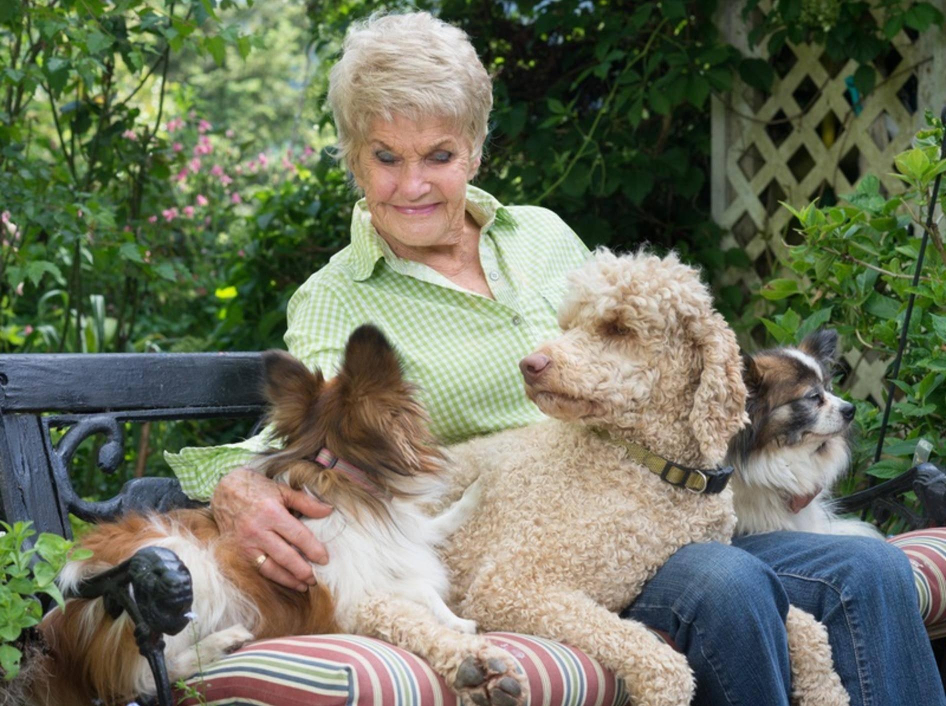 Einfach nur schön, für die sympathische Dame scheint Hundesitting genau richtig zu sein! – Shutterstock / Jamie Hooper