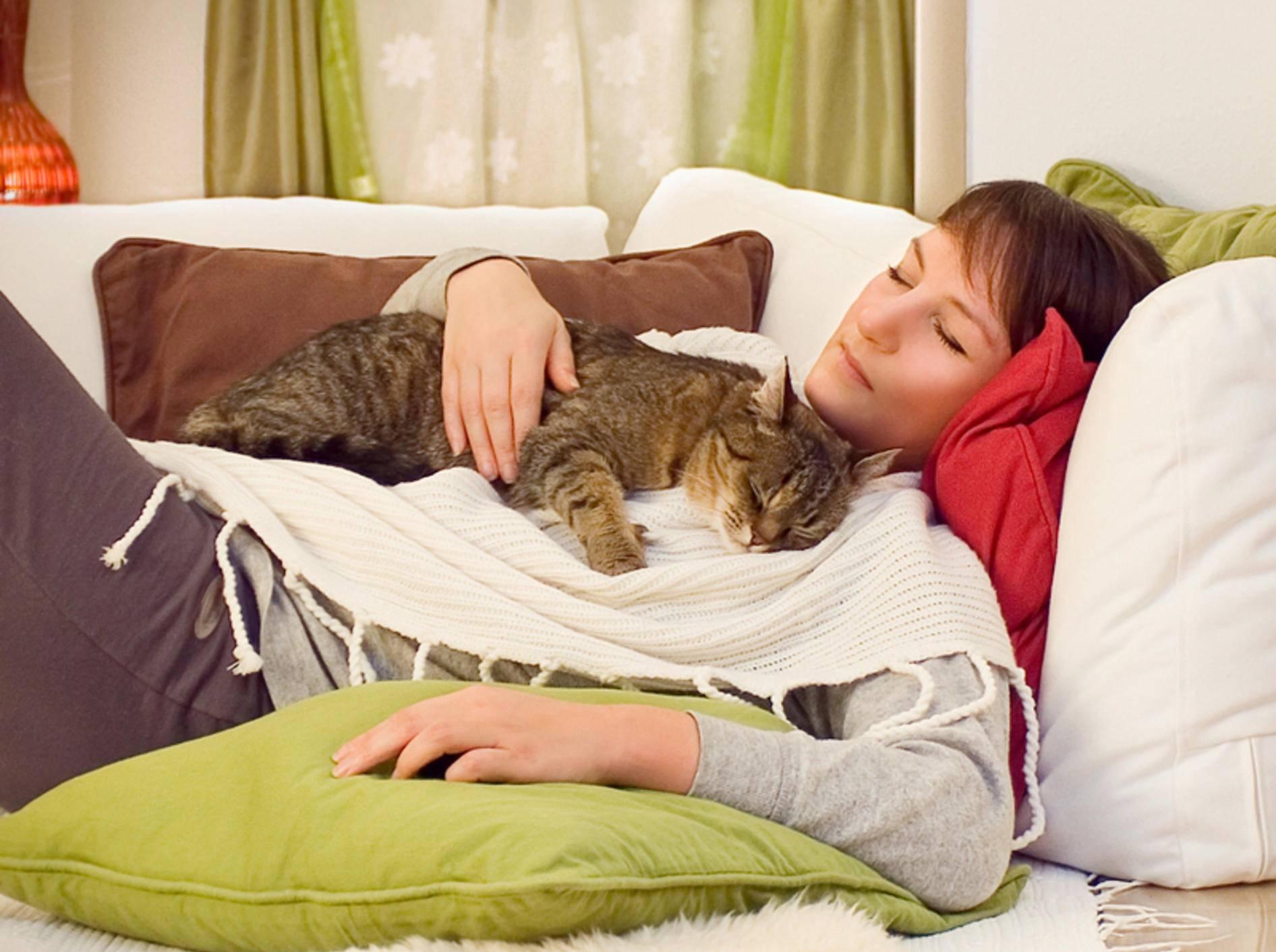 Kuscheln ist sooo schön: Diese Katze fühlt sich wohl und geborgen bei ihrem Lieblingsmensch – Shutterstock / Patrizia Tilly