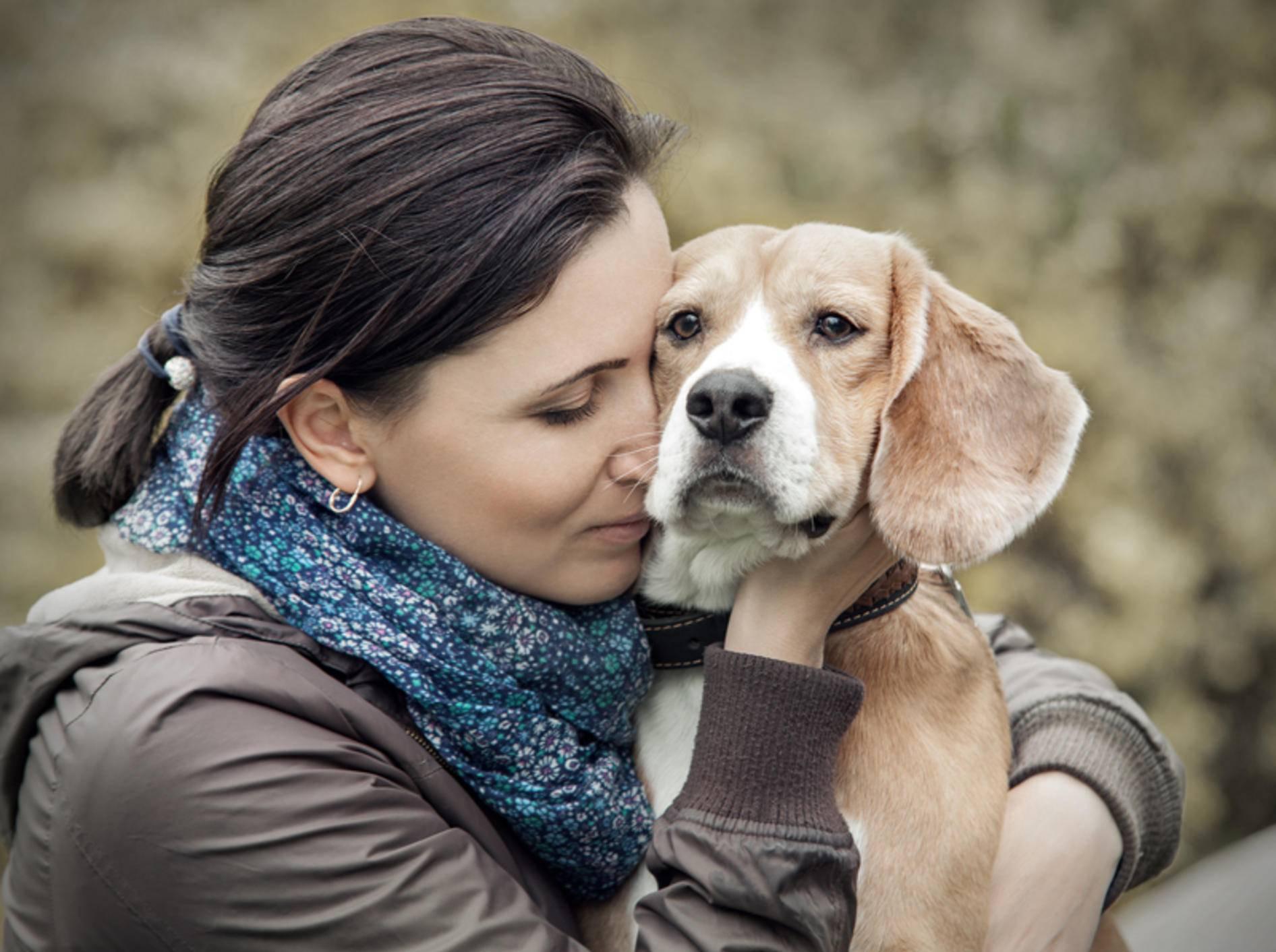 Erinnerungen und Bilder wie dieses können Sie mit anderen Trauernden nach dem Tod des Hundes auf dem virtuellen Tierfriedhof teilen – Shutterstock / Soloviova Liudmyla