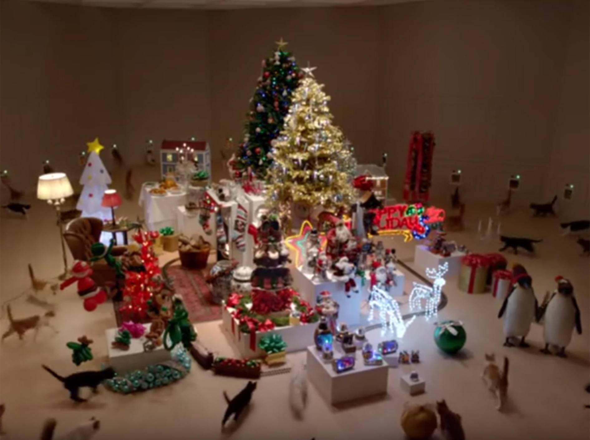 Freche Katzen können Weihnachtsüberraschung nicht widerstehen – YouTube / temptationsbrand