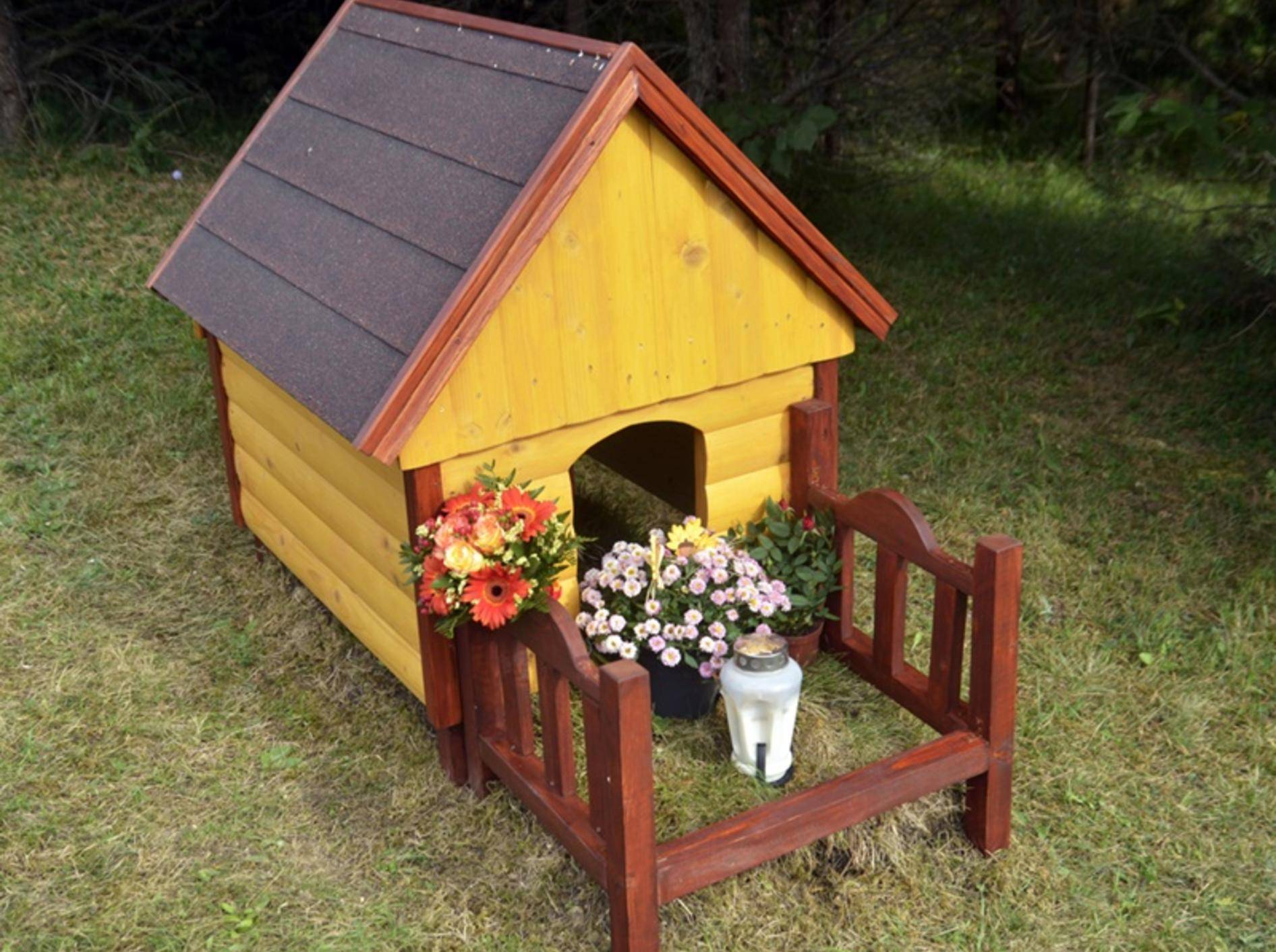 Hund-im-Garten-begraben