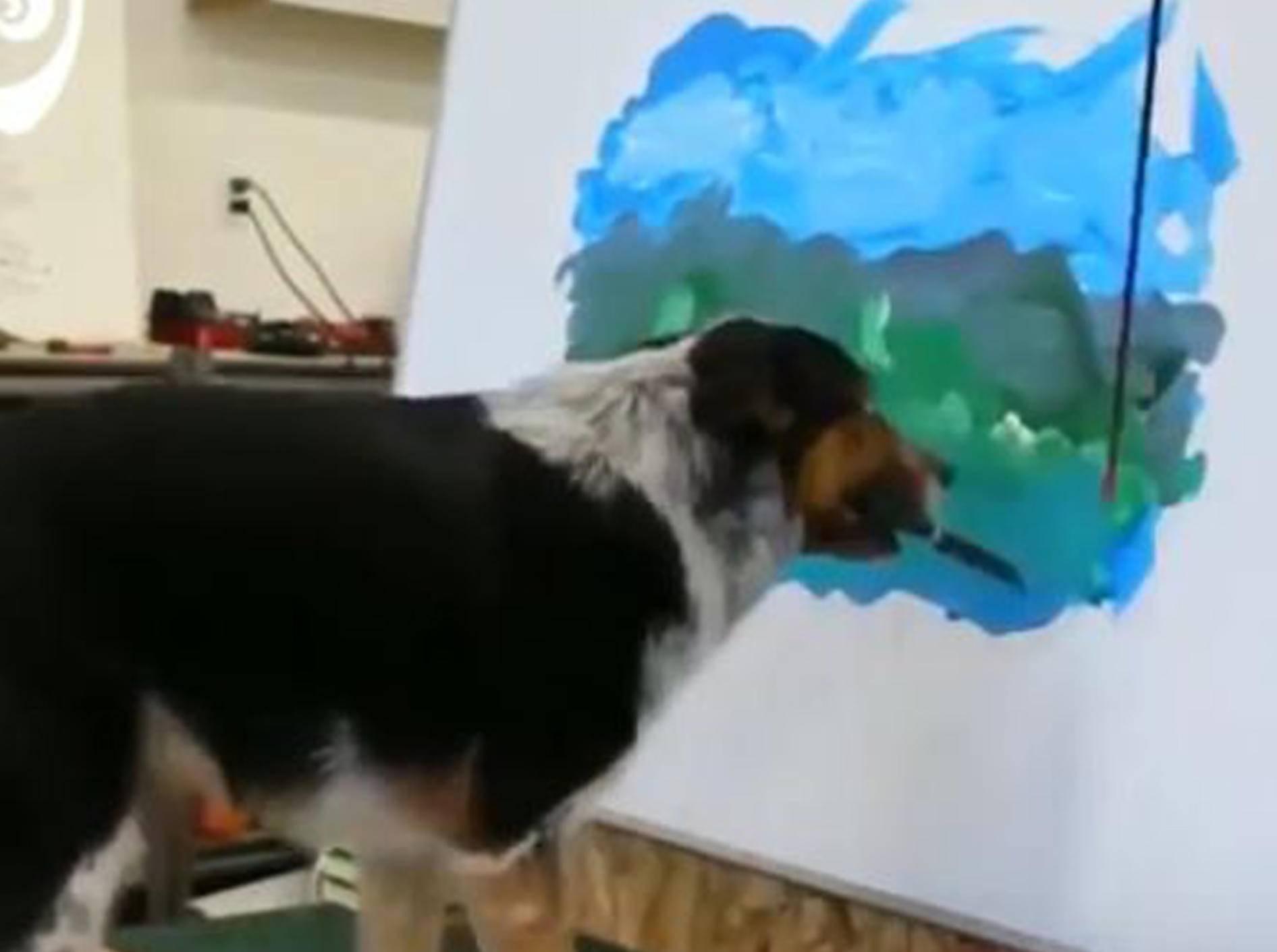Hund Jumpy malt ein Kunstwerk - Bild: YouTube / World Pugs Dog Show
