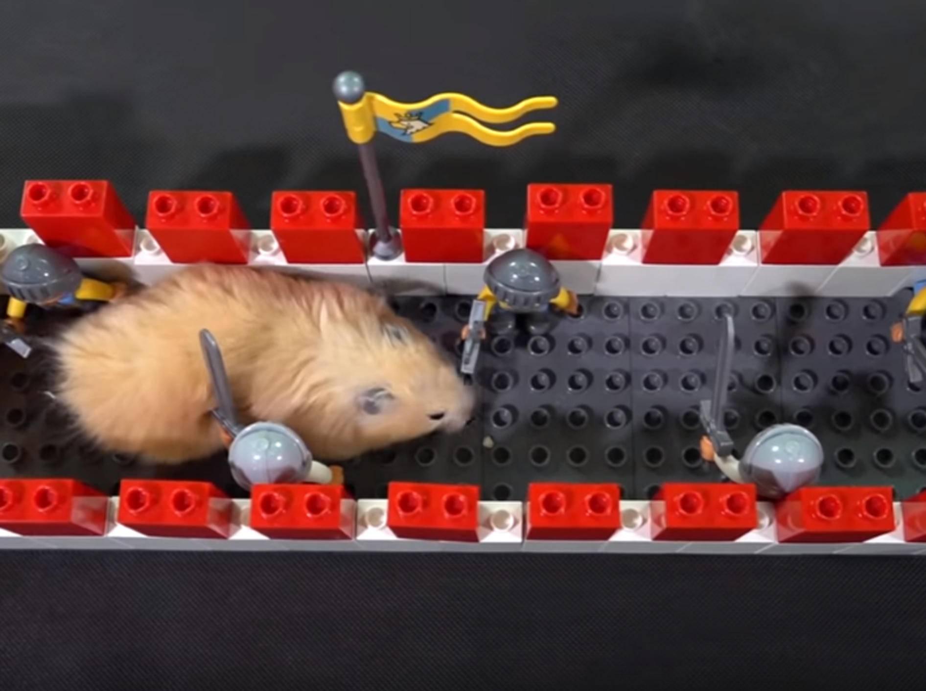 Dieser süße Hamster schlängelt sich zwischen Lego-Steine hindurch - Bild: YouTube / The Secret Life of my Hamster