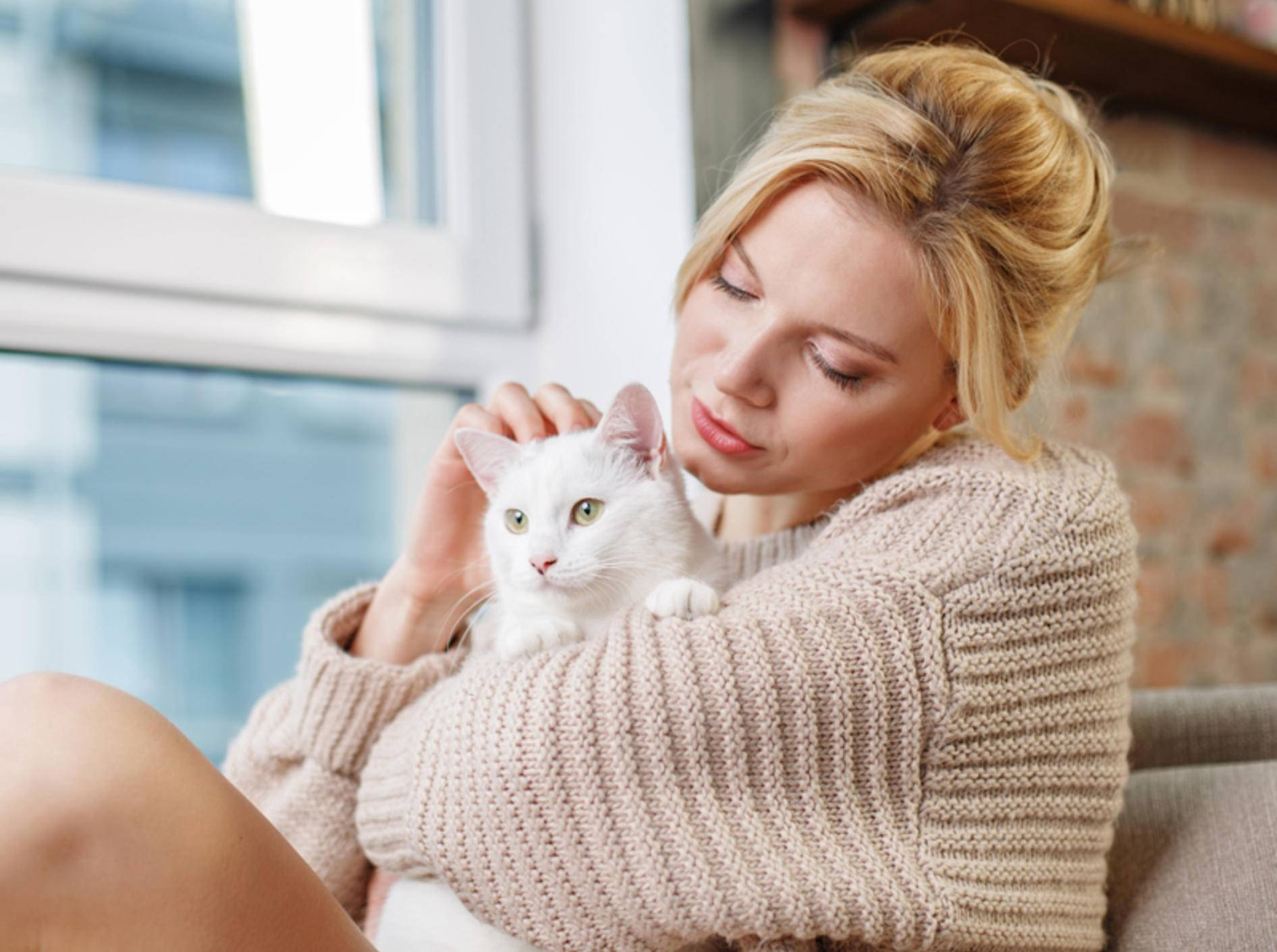 """Wissenschaftler finden heraus: Die """"verrückte Katzenfrau"""" ist nicht mehr als ein Klischee - Bild: Shutterstock / Olena Yakobchuk"""